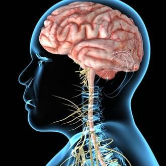 Malattie Neurologiche