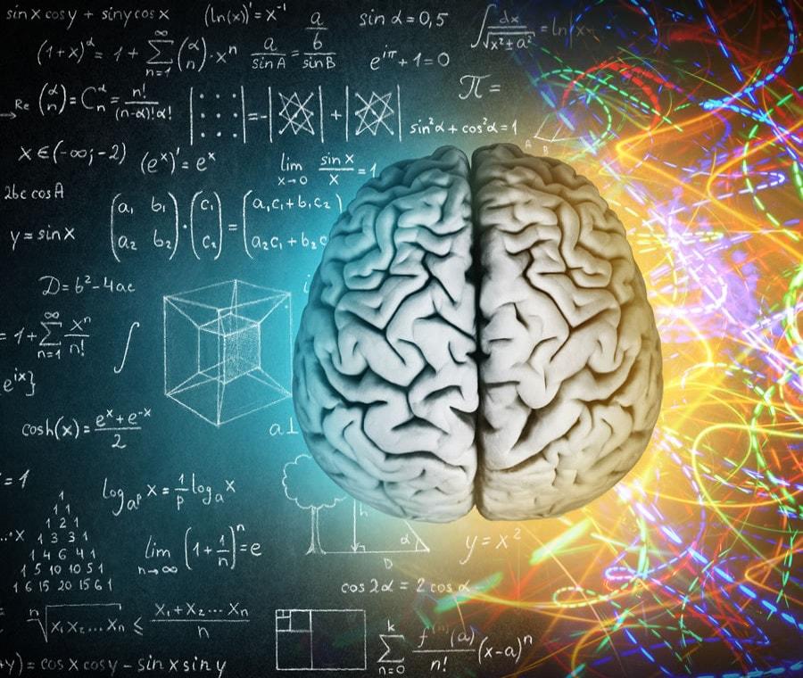 Cervello: Cos'è? Anatomia, Funzione e Patologie