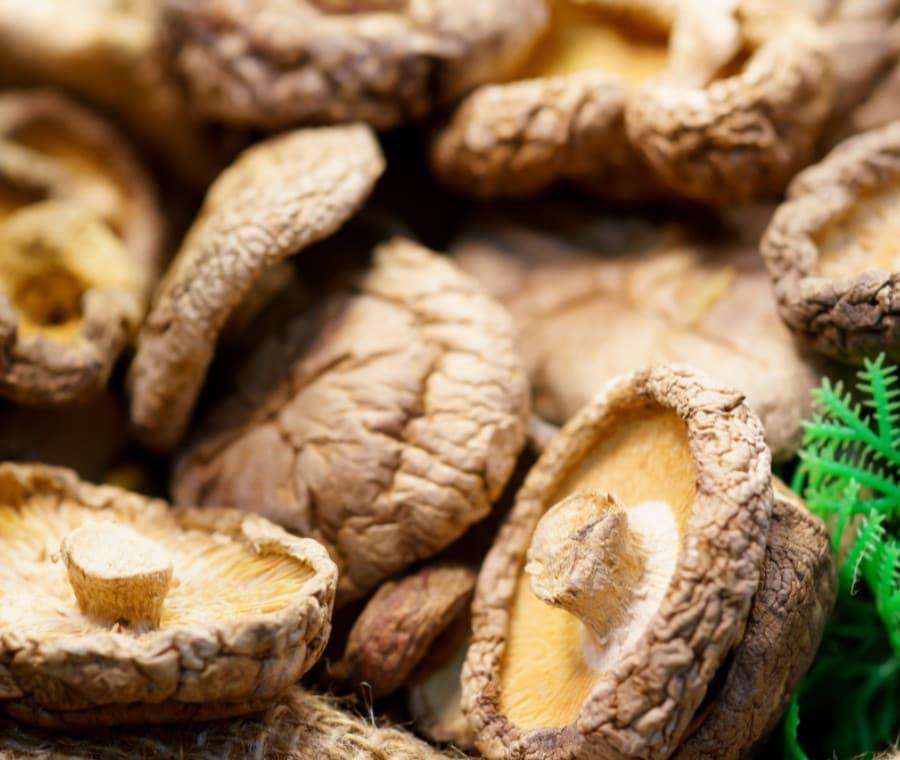 Funghi Shitake: Proprietà Nutrizionali