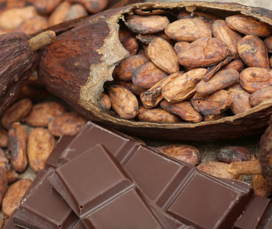 Fave di Cacao: Proprietà e Usi