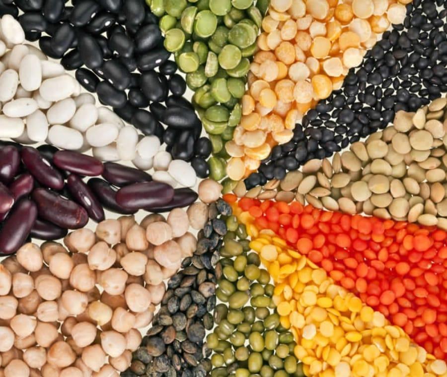 Legumi e Proteine