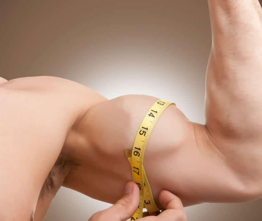 Diametro Trasverso del Muscolo