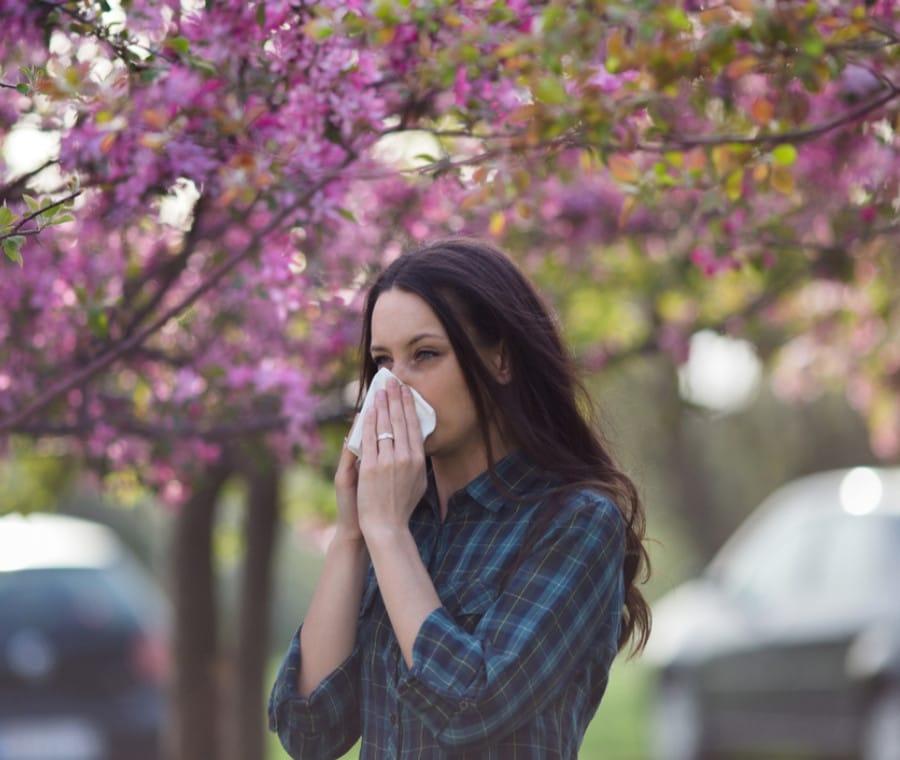 Allergia - Allergie
