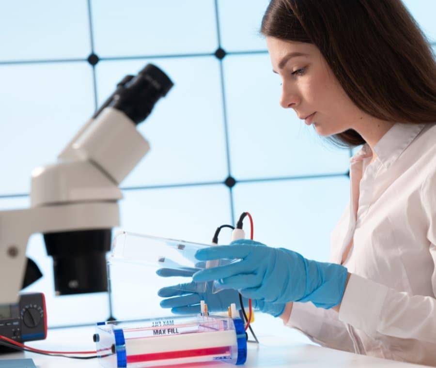Beta Globuline: Cause di Valori Alti e Bassi