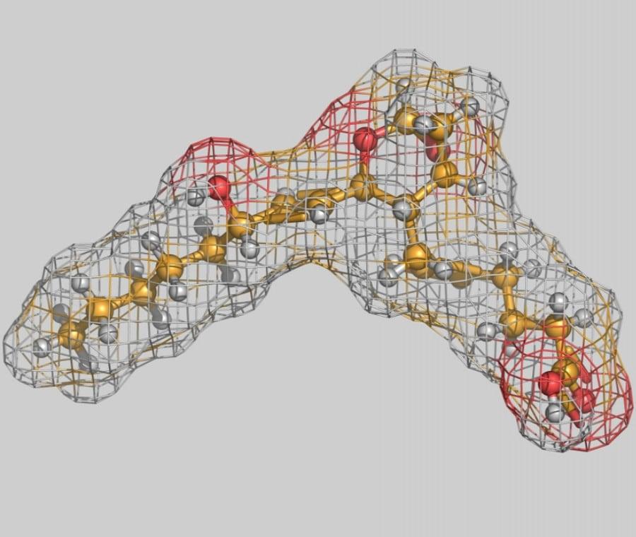 Prostaglandine: Funzioni, Ruolo nell'Infiammazione e in Terapia