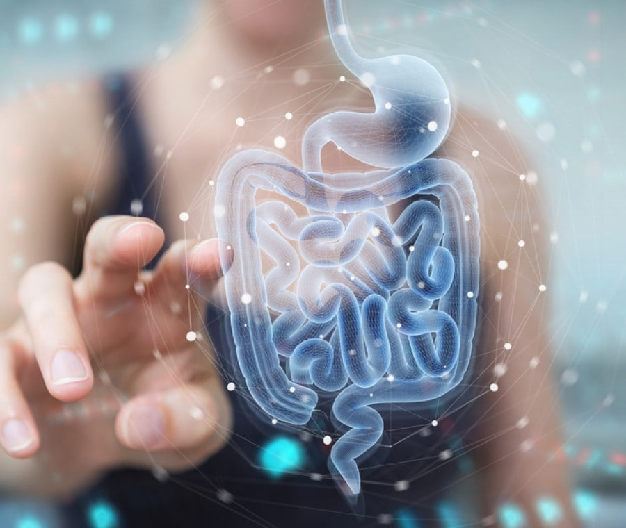 Microbiota o flora batterica intestinale: cosa c'è da sapere?