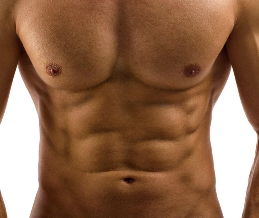 Addominale: Muscolo Commerciale