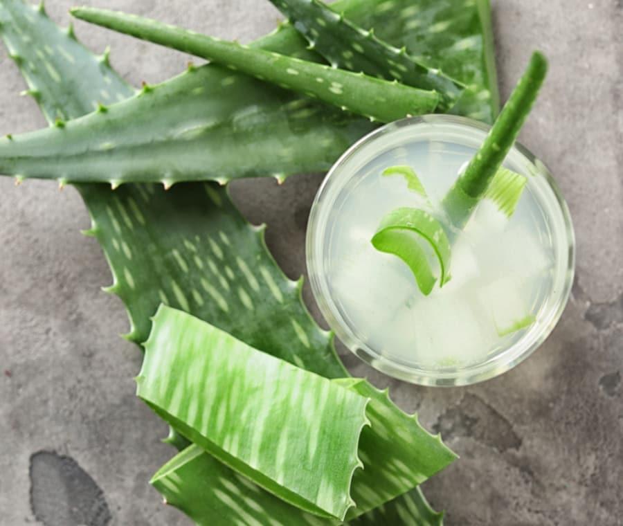 Aloe Succo: Nutrizione e Dieta