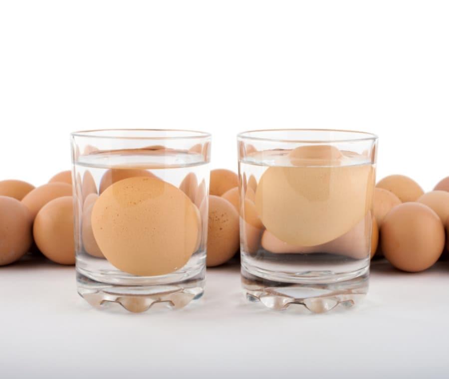 Uova fresche