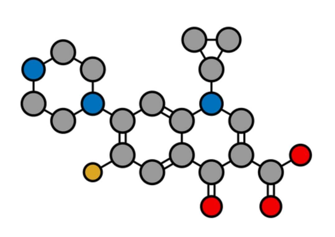erezione della ciprofloxacina
