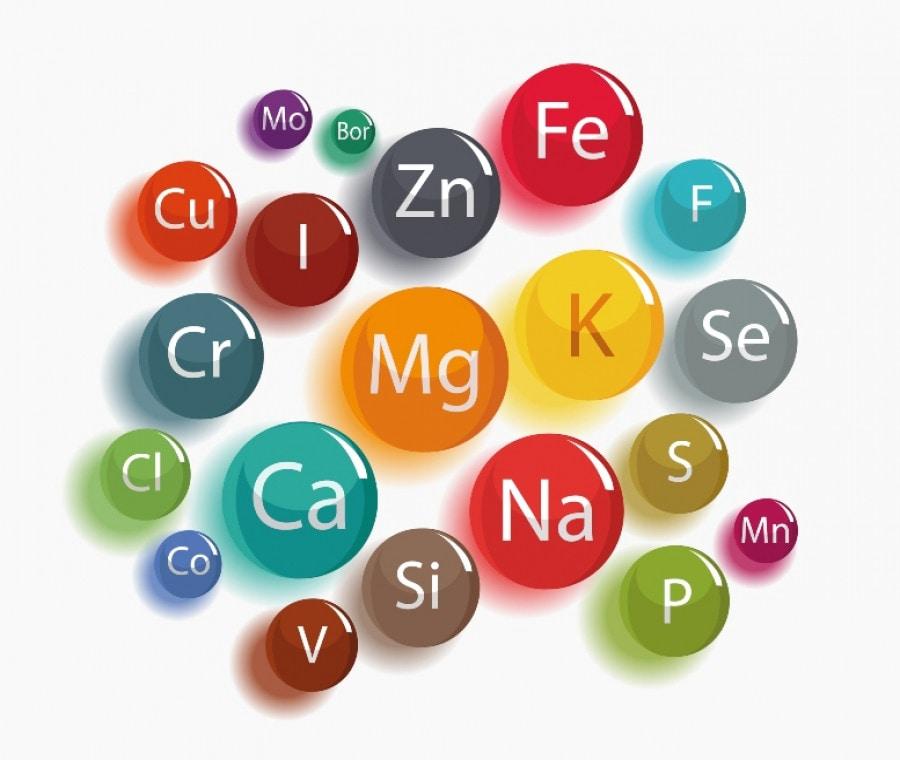 Sali Minerali: Funzioni, Eccesso e Carenza