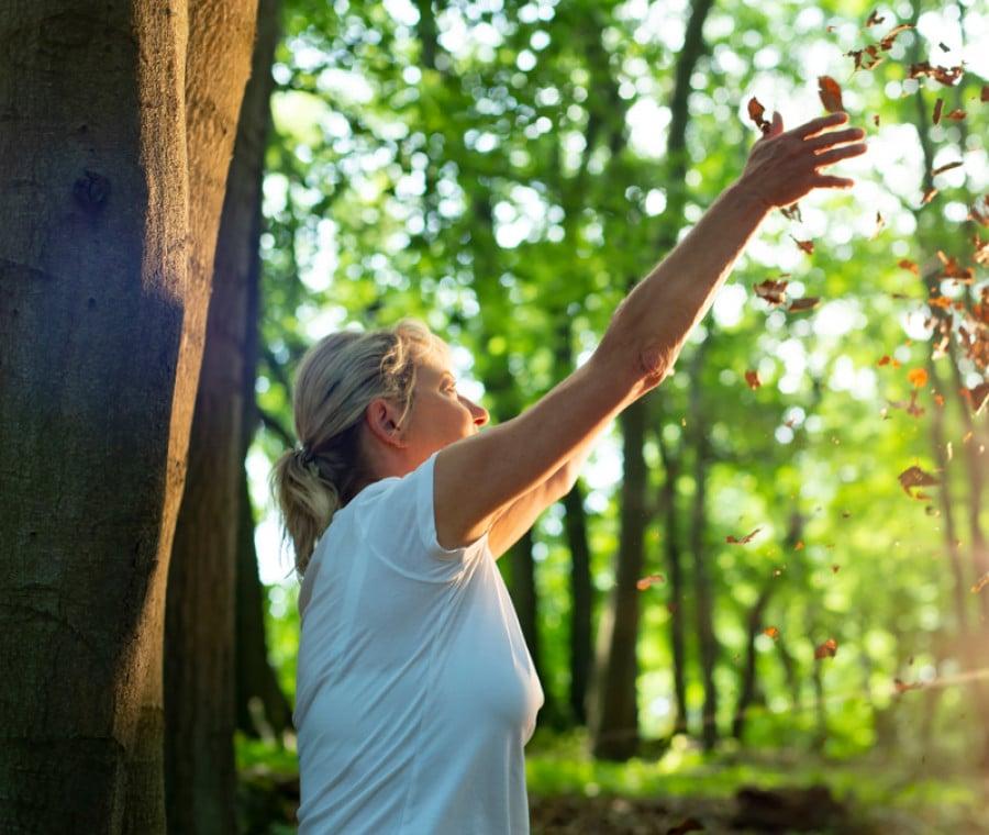 Shinrin-Yoku: Cos'è e Come Funziona il Bagno nella Foresta