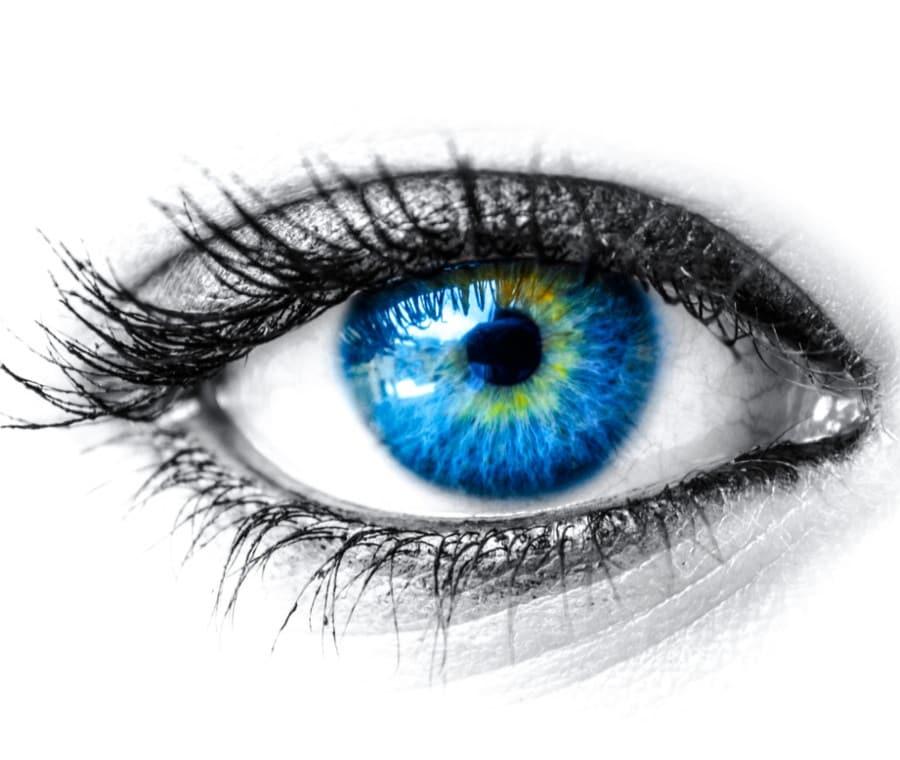 Ginnastica Oculare o Visual Training: Cos'è e a Cosa Serve
