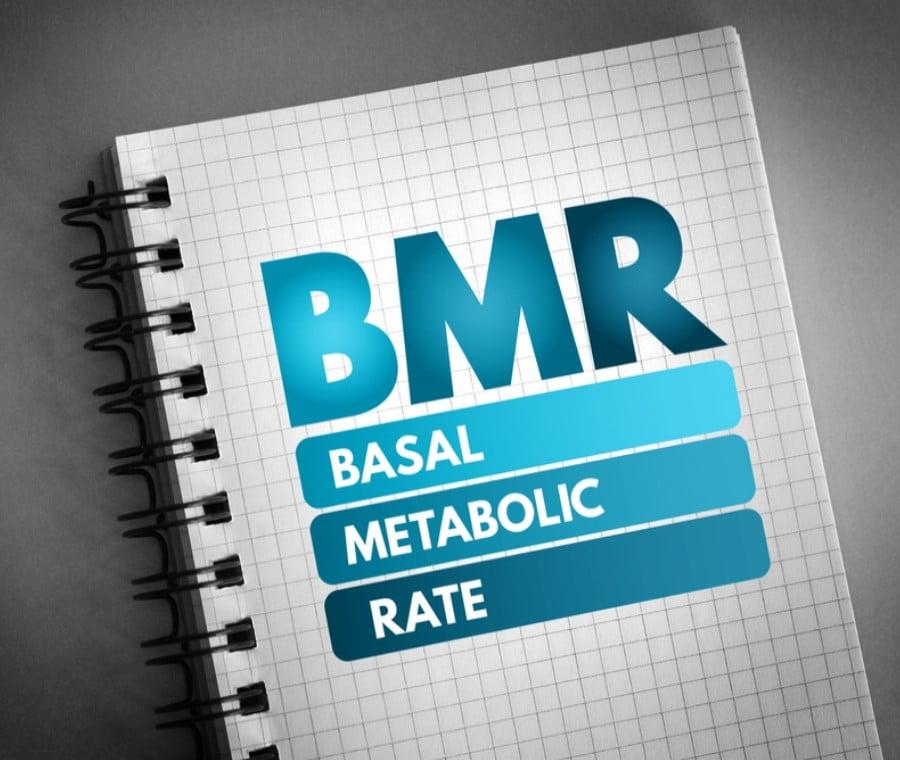 Calcolo calorie e metabolismo basale