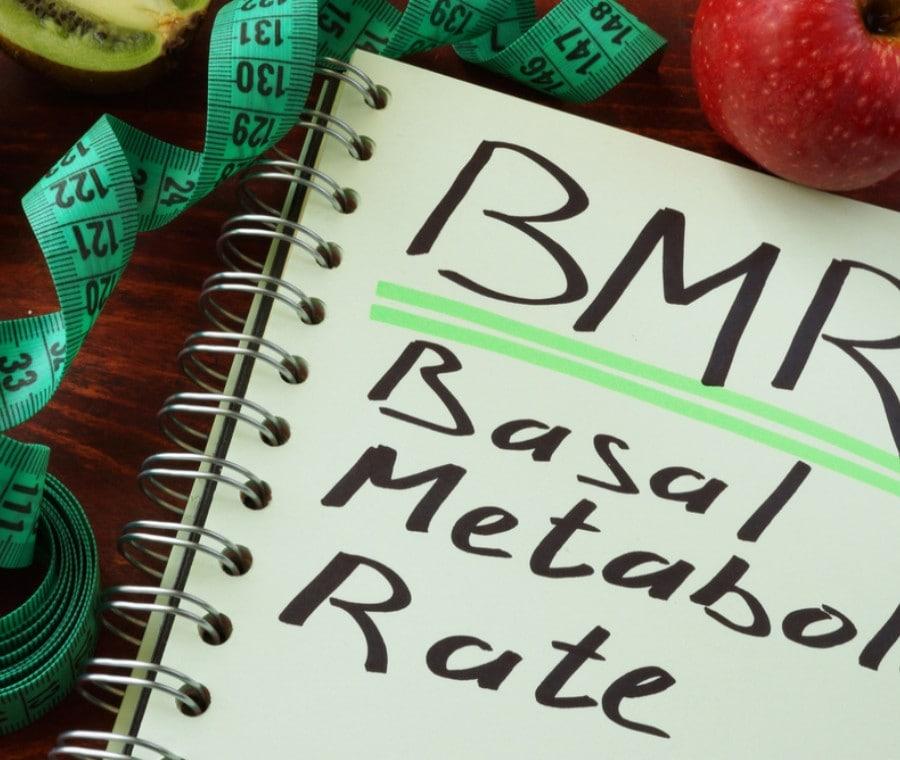 Il metabolismo basale