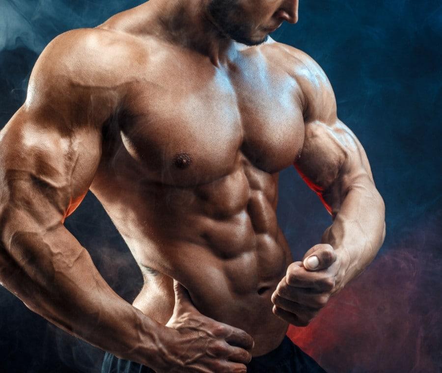 Muscoli Tonico Posturali e Fasici: Quali Allenare e Perché?