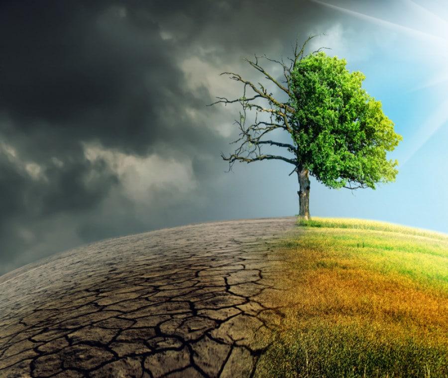 Cambiamenti climatici: tutti gli effetti sulla salute umana