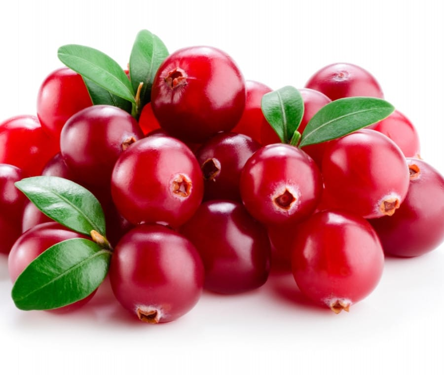 Proprietà del Cranberry in Erboristeria: quali sono?