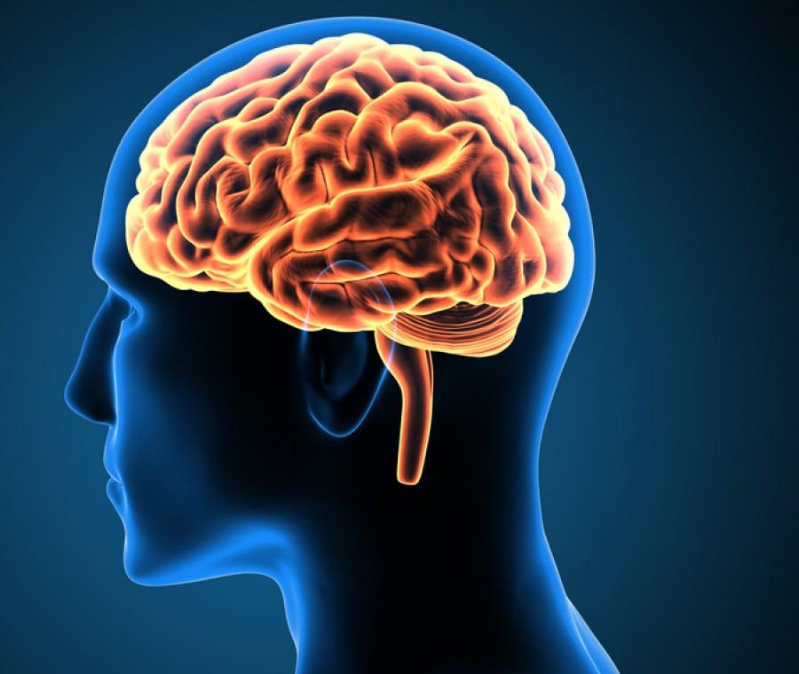 Radicali liberi: un nuovo studio indaga gli effetti positivi sul Cervello