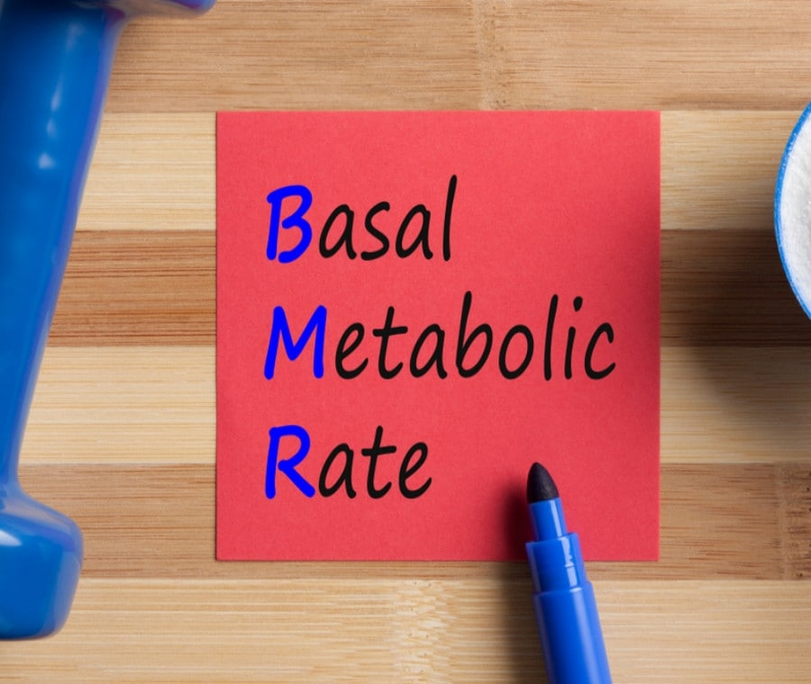 Fabbisogno di Energia e Metabolismo Basale