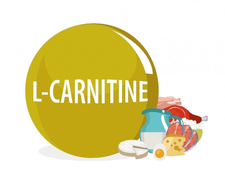 Carnitina, Carne e Aterosclerosi