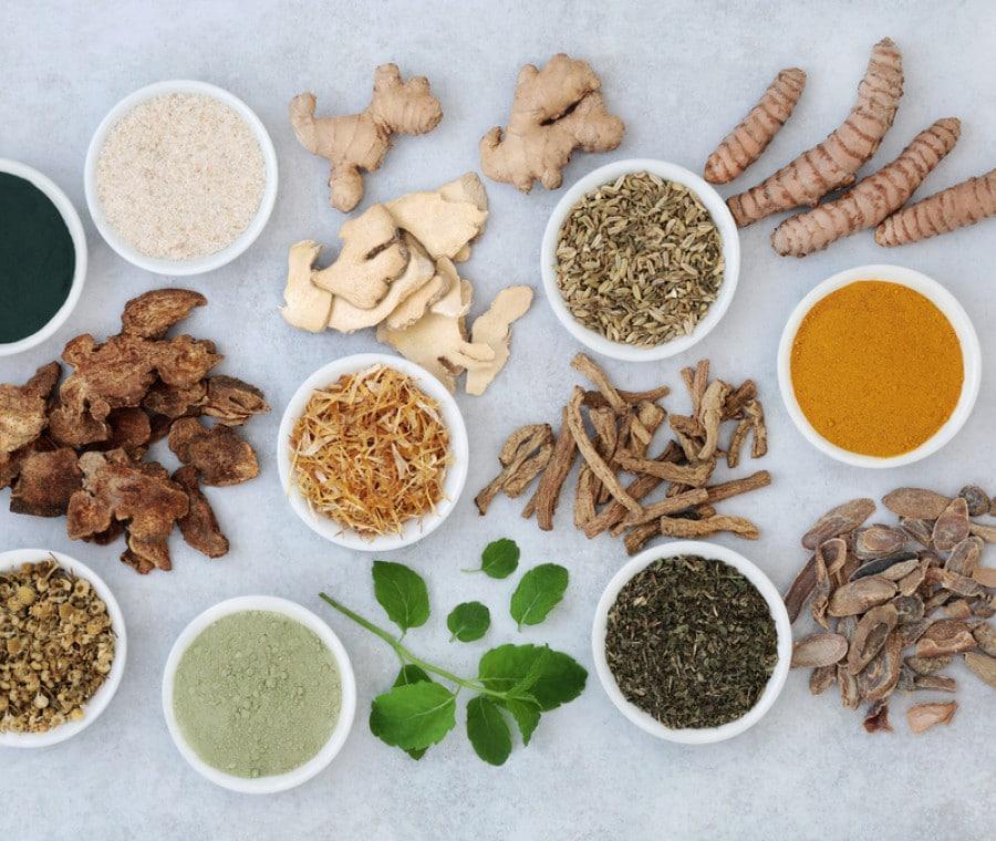 Spezie che favoriscono la digestione