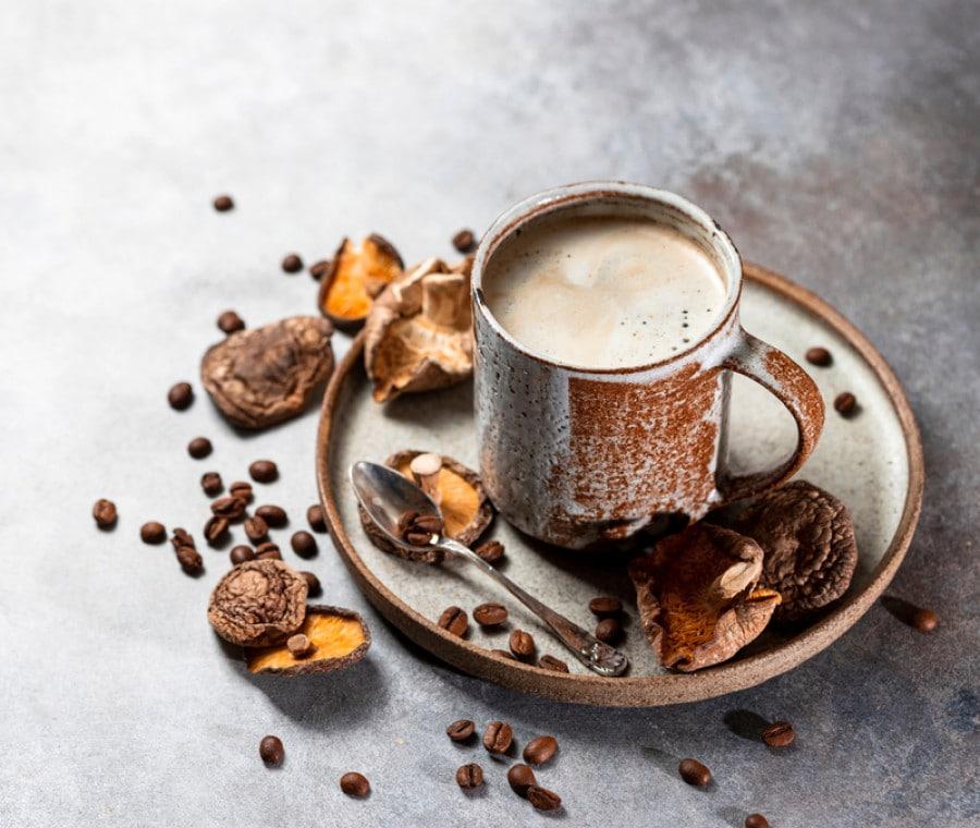 Mushroom coffee: proprietà e benefici del caffè ai funghi