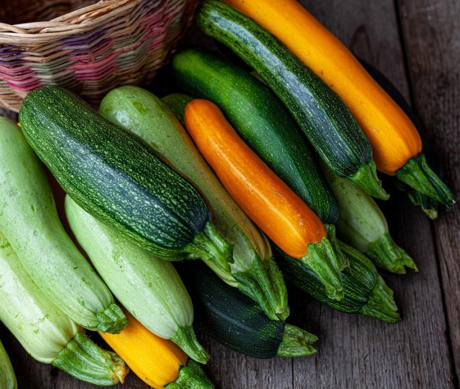 Zucchine: Tipologie e Differenze