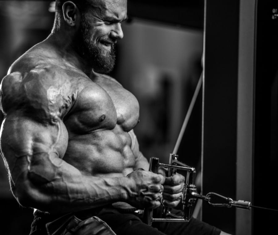 Anti-Establishment Bodybuilding Hypertrophy Program