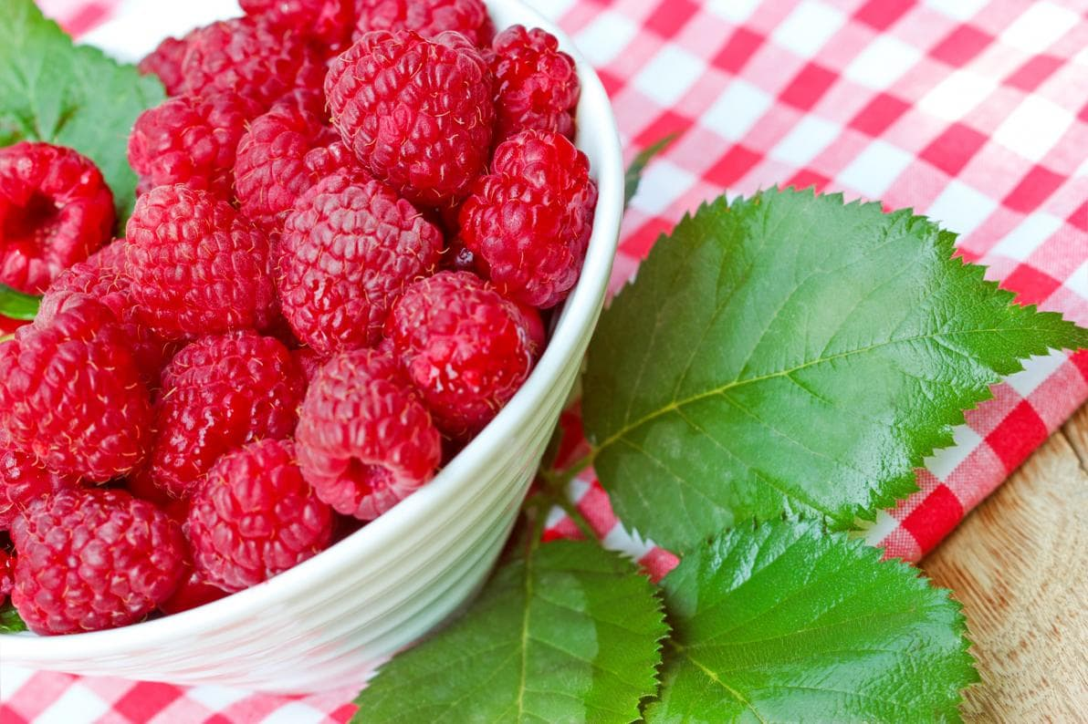 Perché quando fa caldo è bene mangiare leggero?