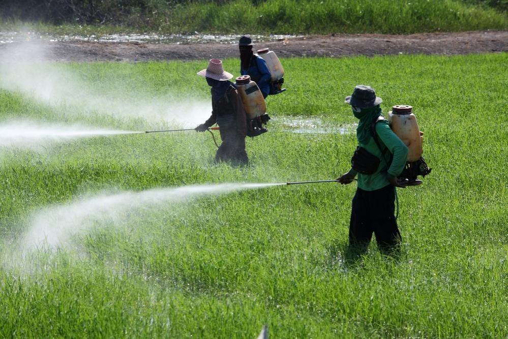 Uso di pesticidi