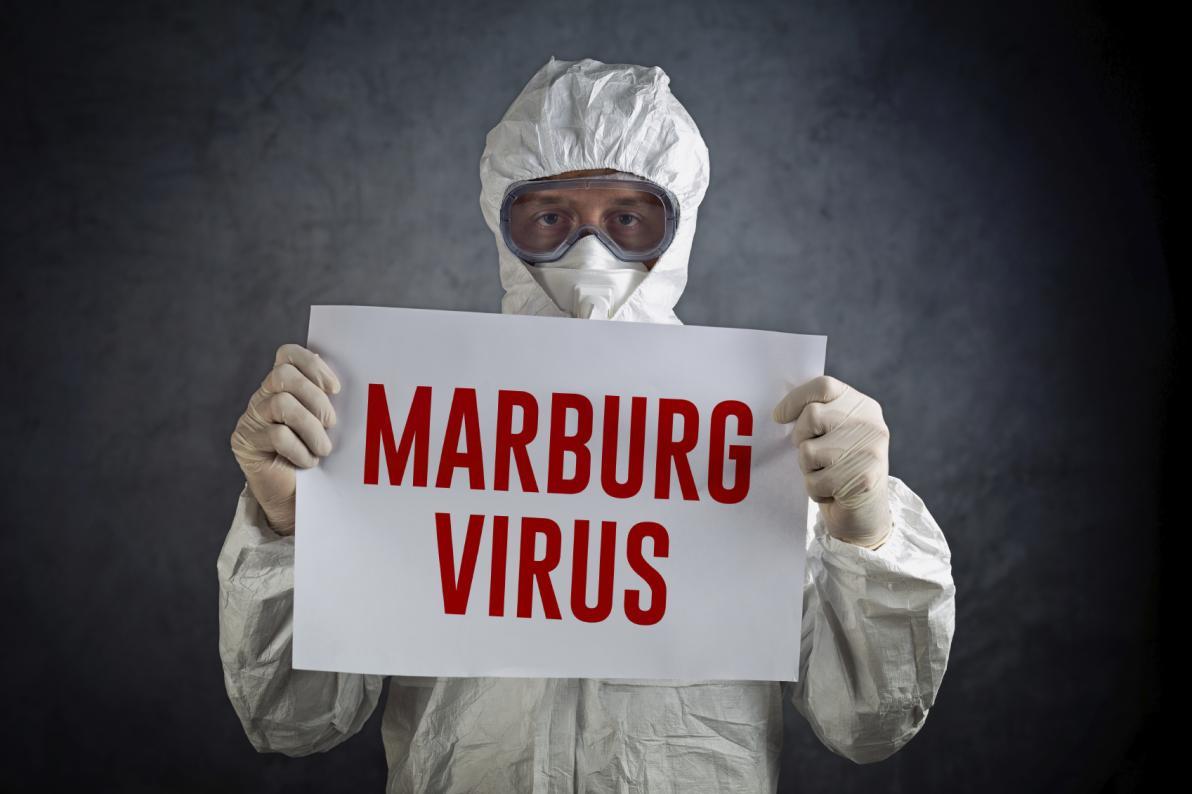 Virus Marburg e rischio di contagio