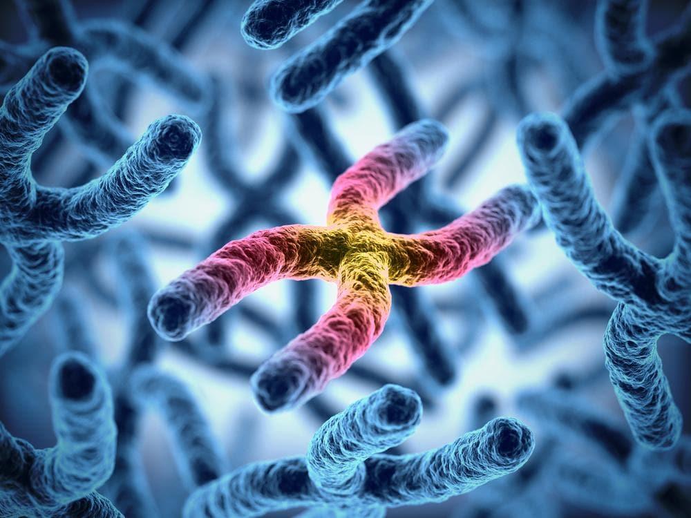 Le dieci malattie genetiche più comuni al mondo