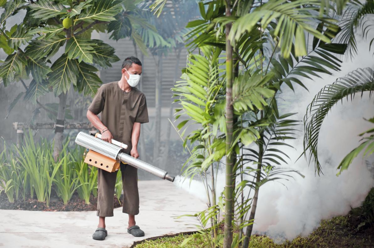 Fumigazione per il controllo ambientale delle zanzare