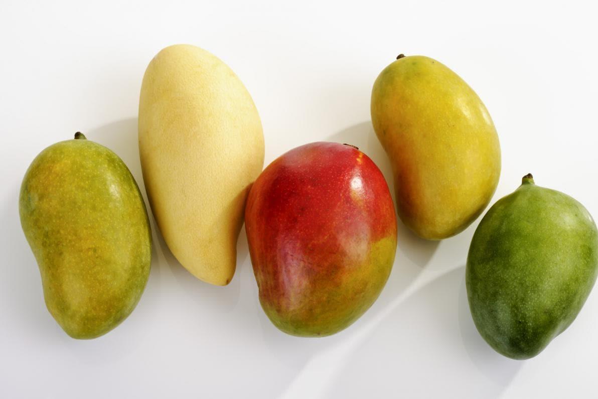 Quale Mango?