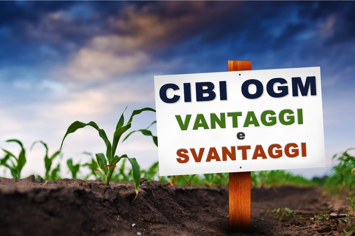 Cibi OGM: Vantaggi e Svantaggi