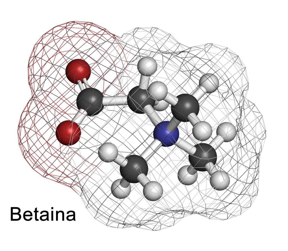Betaina e Omocisteina