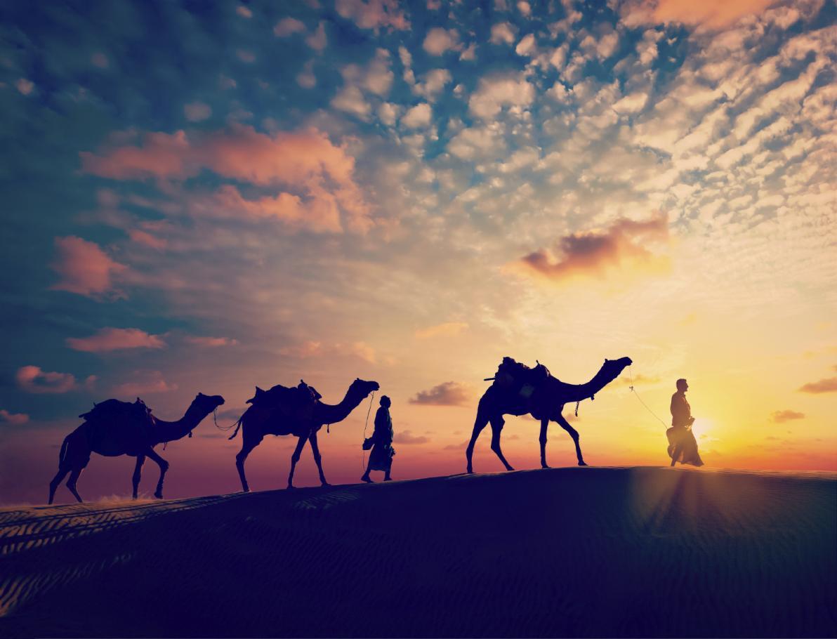 MERS: la nuova epidemia che arriva dal Medio Oriente