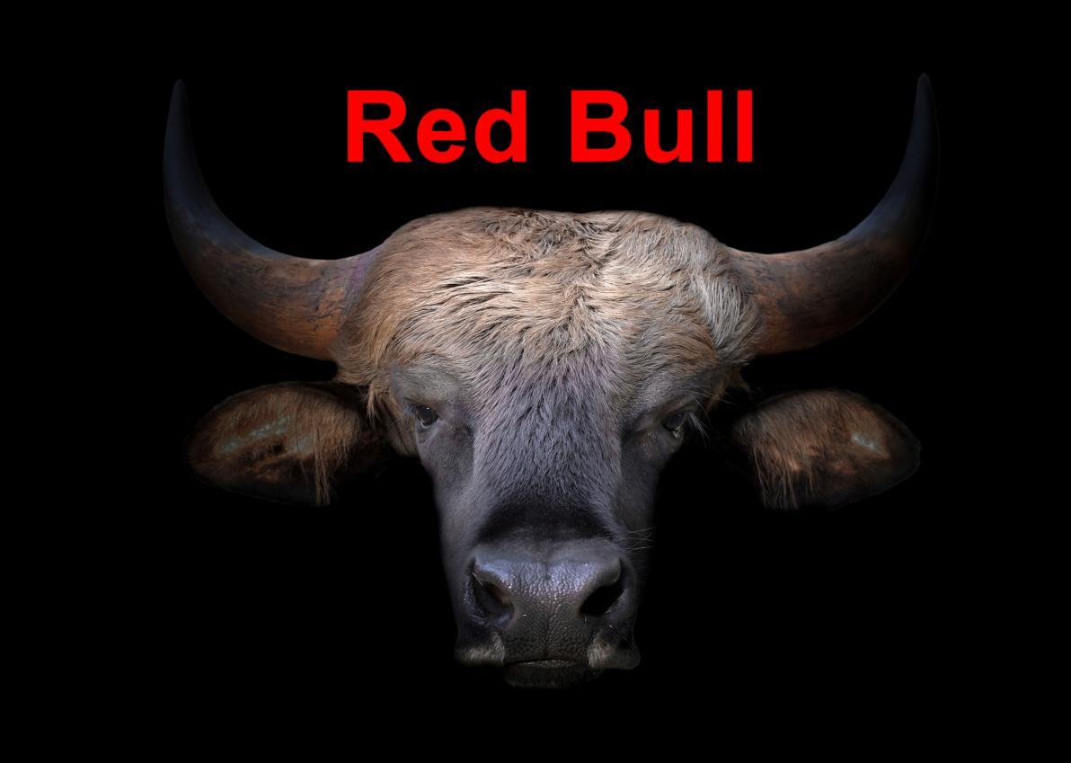 Storia della Red Bull