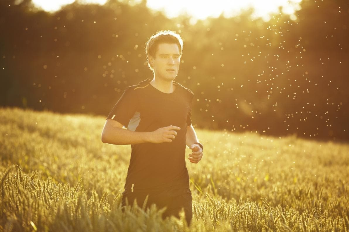 Metabolismo, attività fisica e zanzare