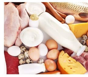 Dieta Oloproteica