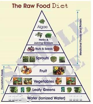 Dieta Crudista Piramide Alimentare