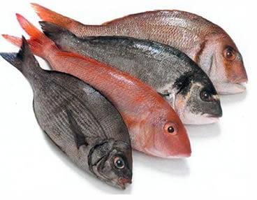Pesce Magro
