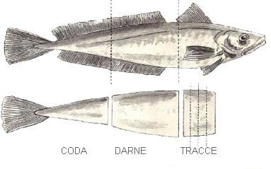 Pesce porzionatura