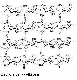 Struttura Cellulosa