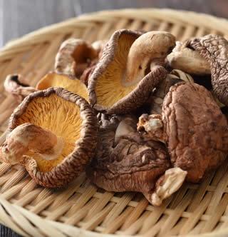 Funghi Shitake