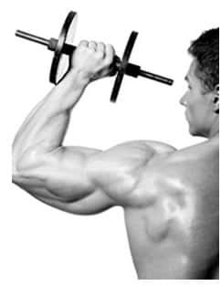 Forza Diametro Trasverso Muscolo