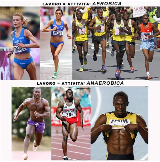Differenze centometristi maratoneti