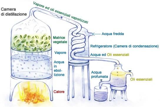 Distillazione - Oli essenziali ed acqua profumata