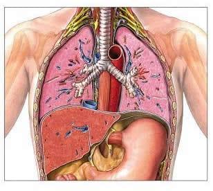 Insufficienza respiratoria